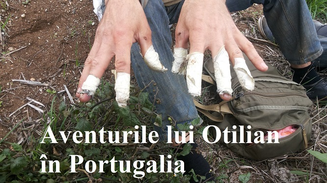 Aventurile lui Otilian în Portugalia