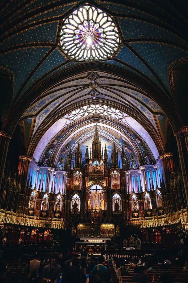 Arde catedrala de la Paris despre care am învățat la școală
