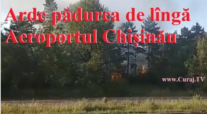 Incendiu de vegetație lîngă Aeroportul Chișinău