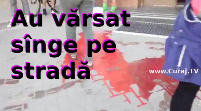 """Au vărsat găleţi de """"sînge"""" în faţa primăriei"""