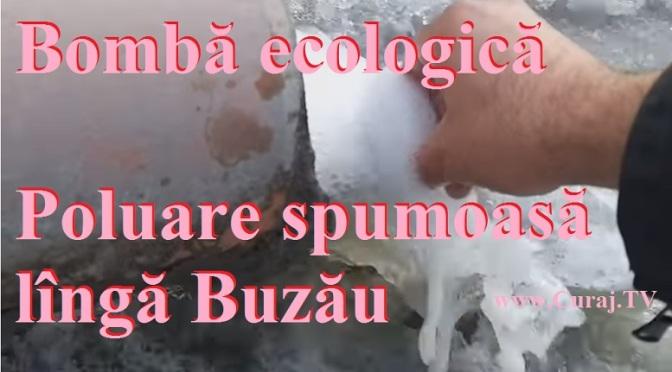 Dezastru ecologic spumos lîngă Buzău