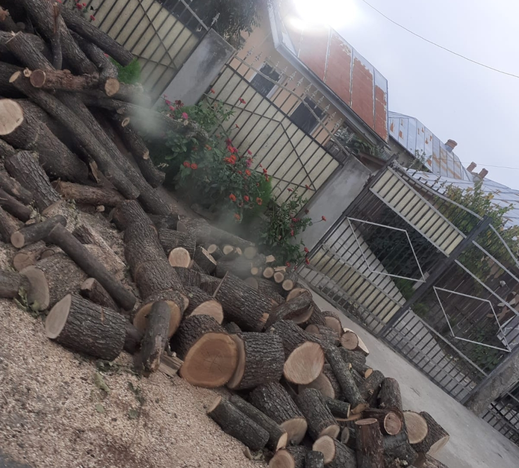 lemne la poartă
